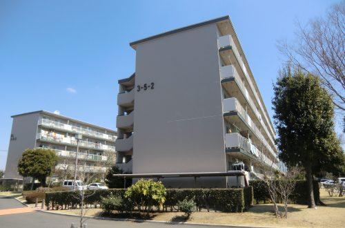Umur Bangunan Jepang Selama 30 Tahun Tidak Sepenuhnya Benar